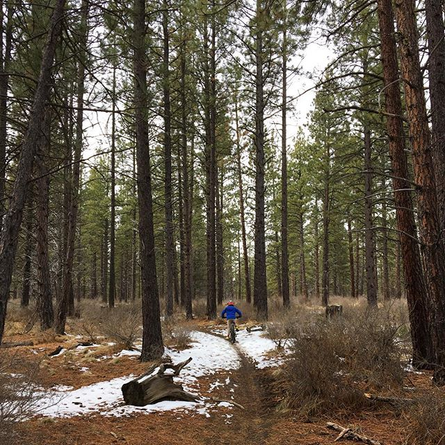 "Making amends to the trail gods for riding a trail that was probably too muddy. BUT, the joy of riding with my kiddo through the forest! I'm soaking up his quiet wisdom, noticing the way he considers picking himself up after any fall to be part of the fun. ""You need to do things that are fun,"" he told me quite pointedly today. NOTED! ❤️"